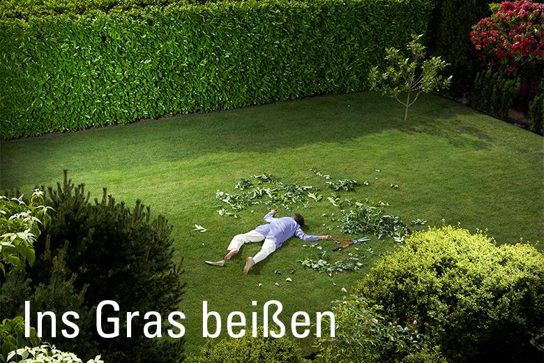 Ins Gras Beißen