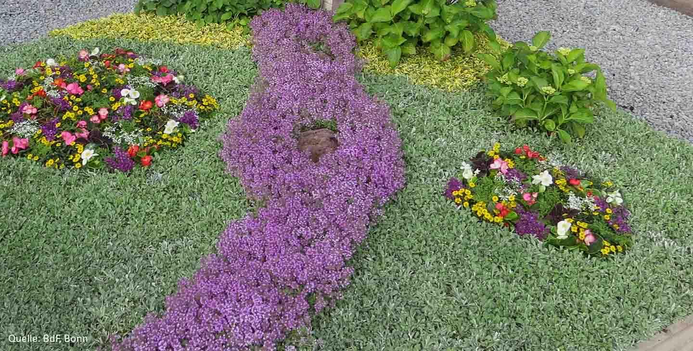 jahreszeitlich passende grabbepflanzung friedhofsblumen. Black Bedroom Furniture Sets. Home Design Ideas
