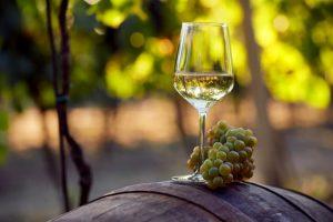 Weinglas vor Weinberg