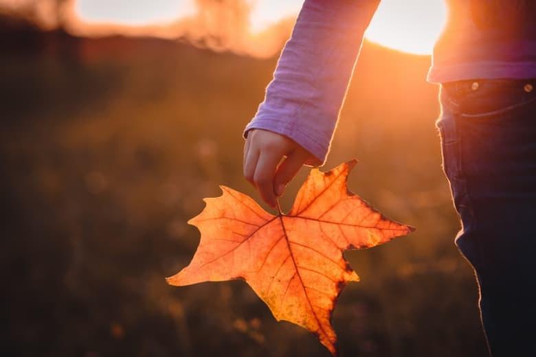 Hand hält Blatt in Herbstfarben