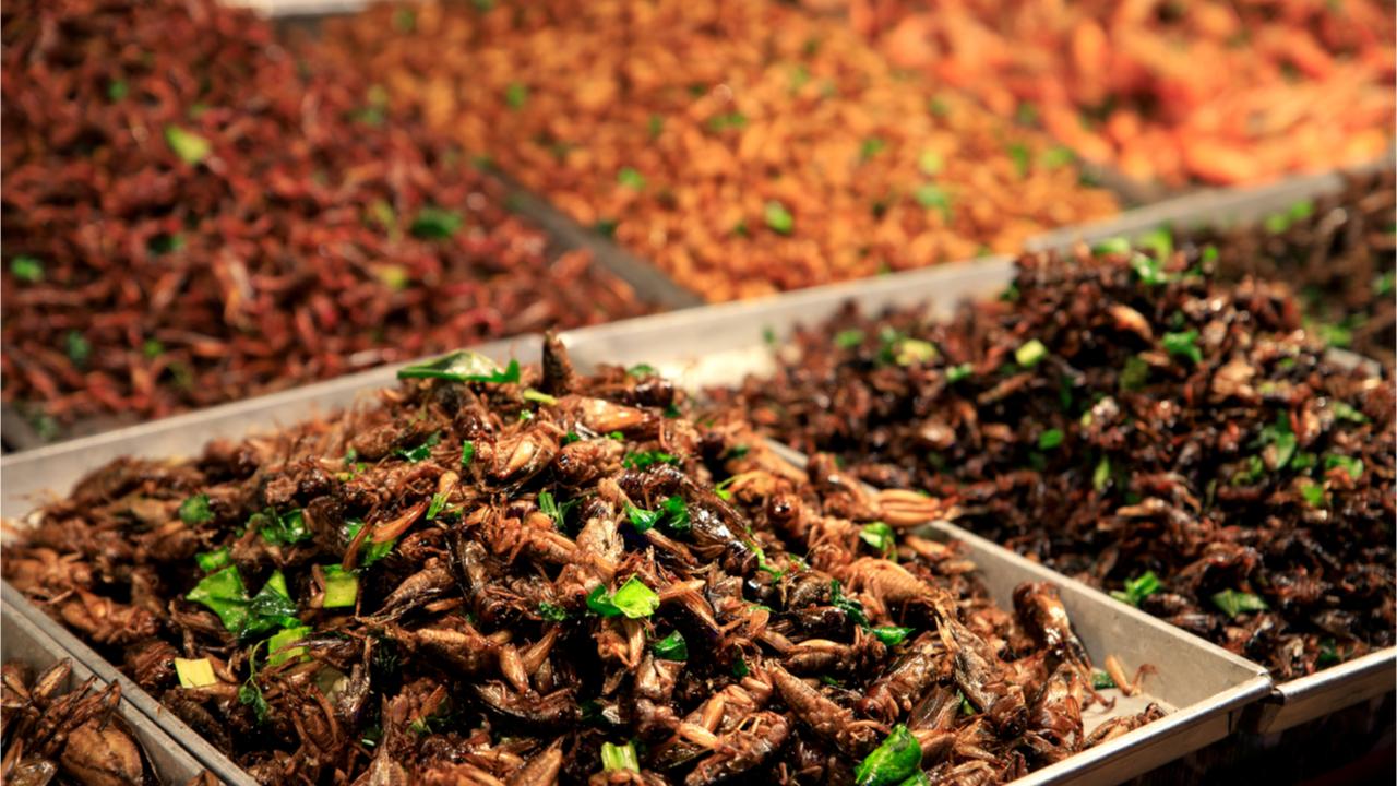 Foodtrend 2021: Insekten.